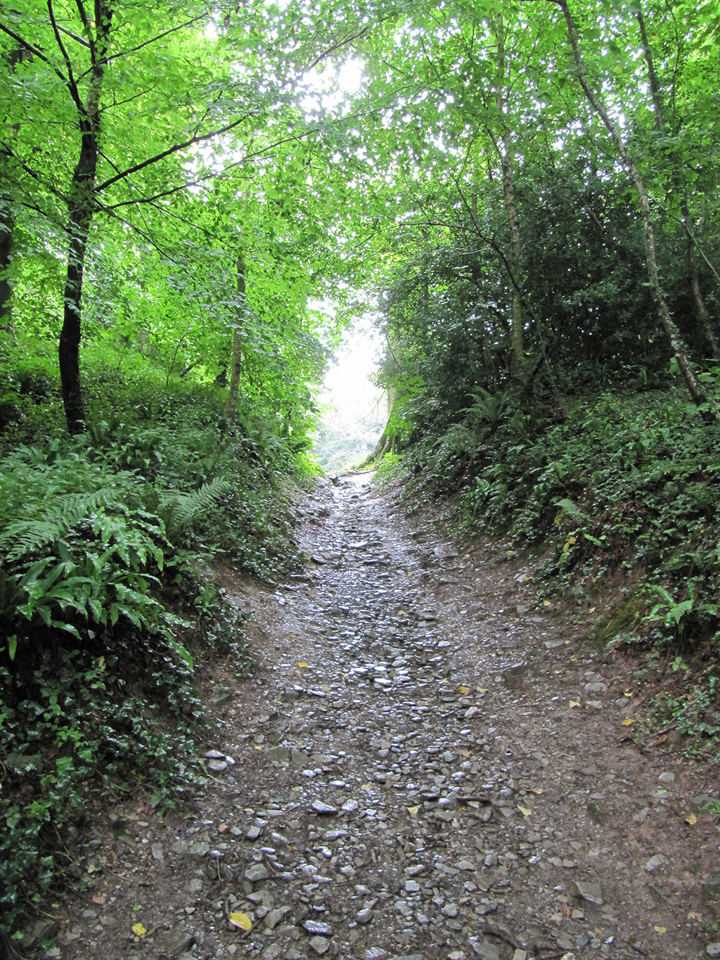 Footpath leading down into the valley.